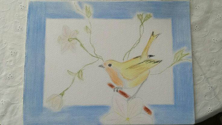 Denise Michelle Pol,  A Robin, 2010, pastel on paper.