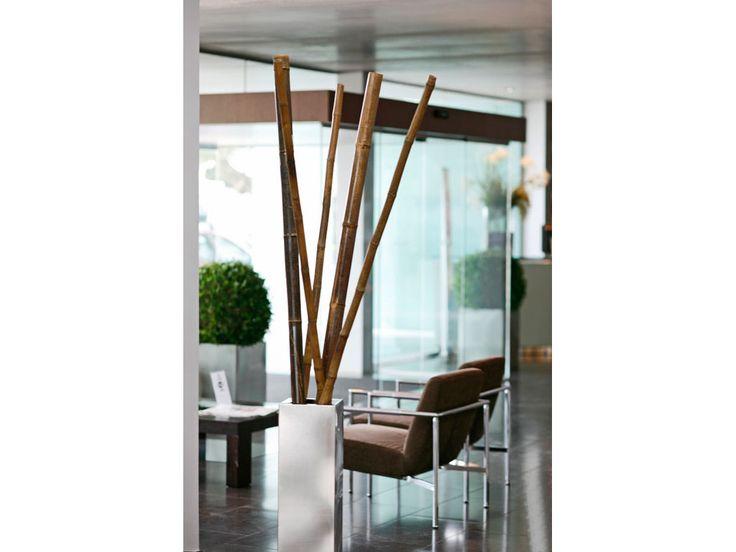 ¿Conoces los tutores decorativos? Son un clásico en la #decoración tanto interior como exterior, dotando de un toque exótico el lugar que elijas. #hogar #home