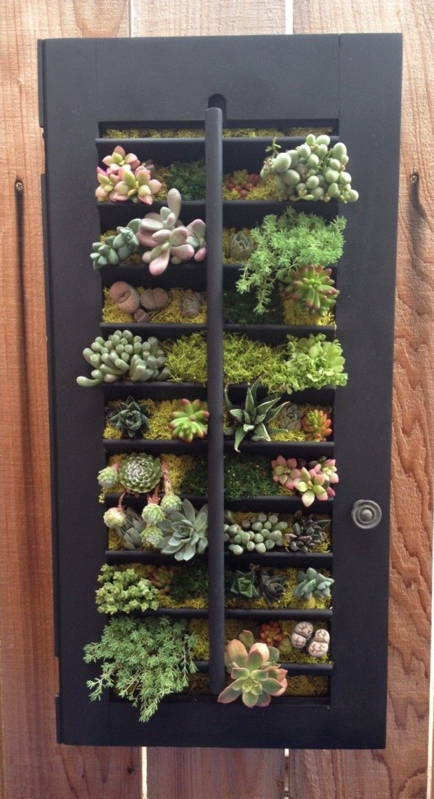 Father 39 S Day Gift Hanging Succulent Vertical Garden In