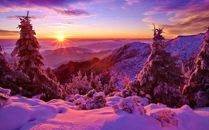 Winter Sky Sunset Mountains Forest Trees Spruce Snow Hd Wallpaper In 2020 Winter Landscape Mountain Sunset Winter Sunset