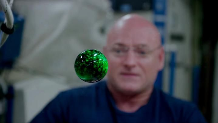 Earlier this year, high above Earth, astronaut Scott Kelley demonstrated in this video how water behaves when it's freed from the constraints of gravity. T