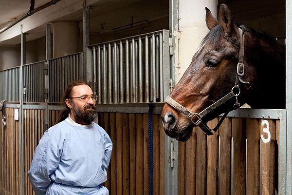 Dr. Túri Árpád a Dunaföldvári Állatkórház vezető főorvosa, általános állatorvos, kisállat specialista klinikus szakállatorvos, lógyógyász specialista klinikus szakállatorvos valamint vadgazda szakmérnök  Békében az erdőkben  #kutya #ló #erdő #lovaglás #kutyabaráthelyek #horse #dog