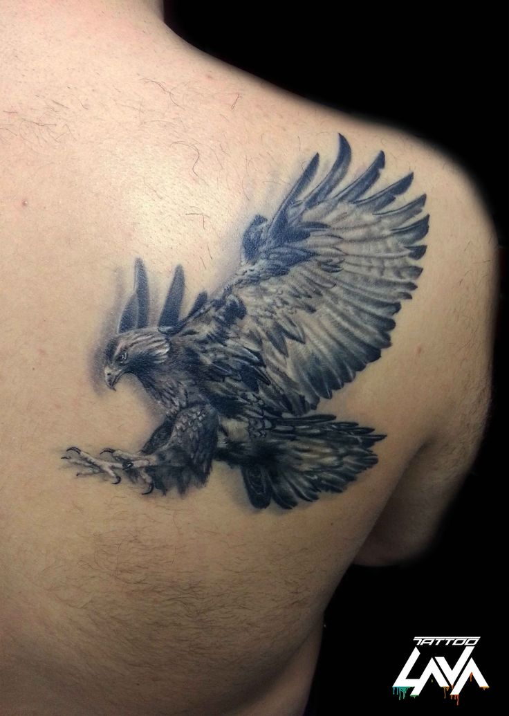 Best 25 eagle wing tattoos ideas on pinterest wing for Eagle wings tattoo
