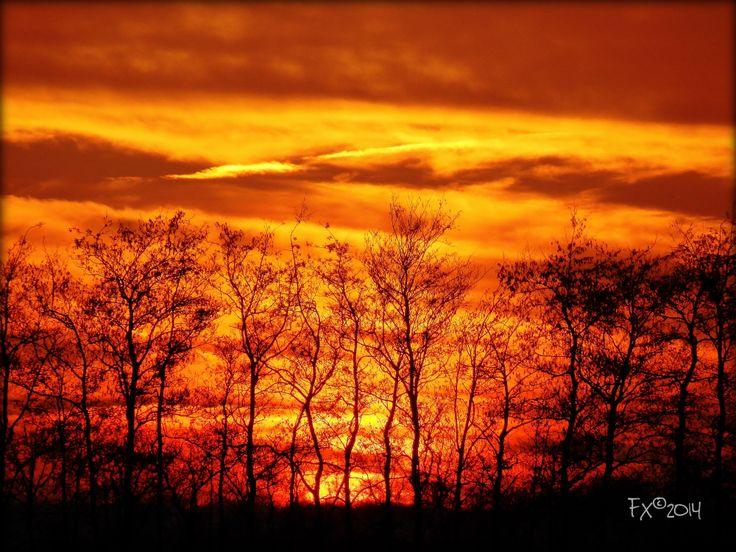 golden sky at sunset at Uitgeest NL