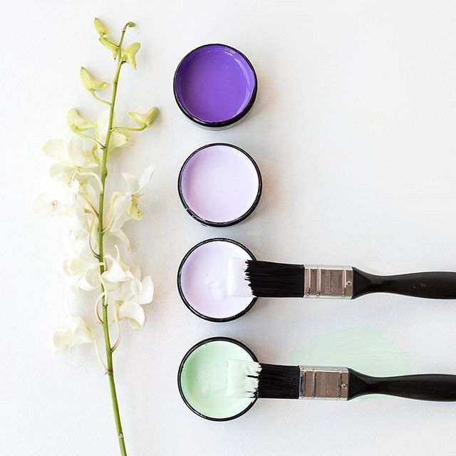 Be playful with shades of purple softened with a touch of mint. From top, Resene Kingfisher Daisy, Resene Perfume, Resene Fog and Resene Fringy Flower. #Resene #Resenepaints #Resenecolourpalette #Resenelovescolour #testpotcolours