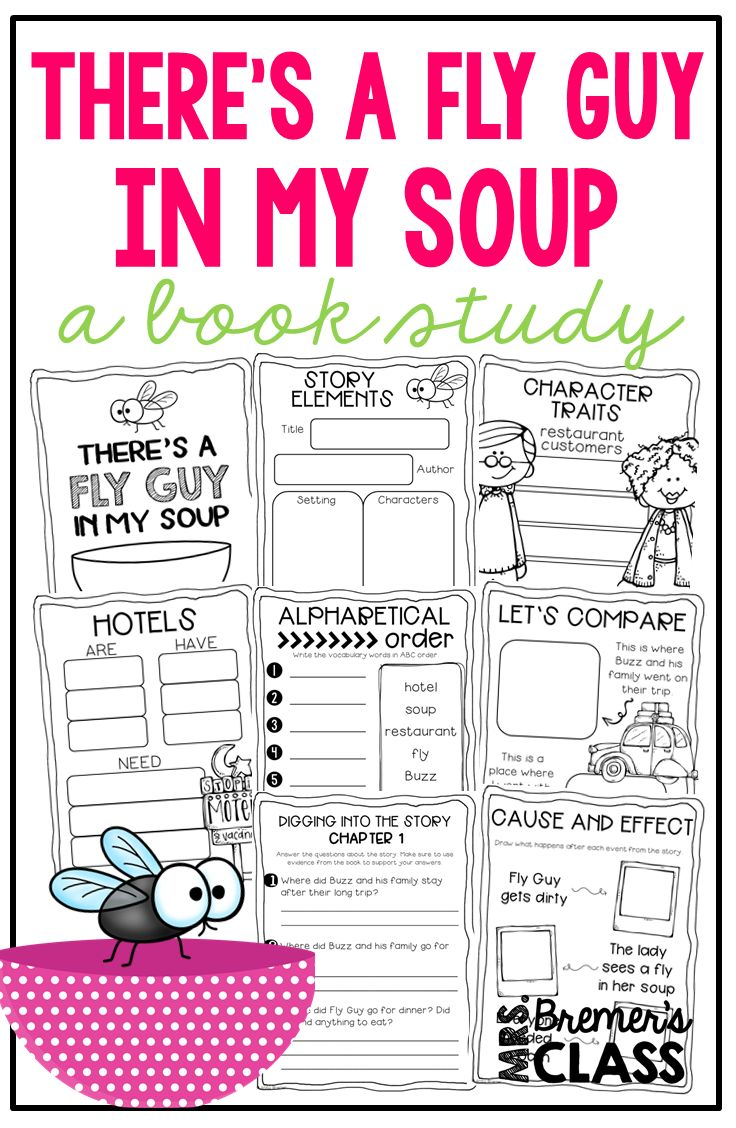 There's A Fly Guy in My Soup | Fly guy, Book study, Guided