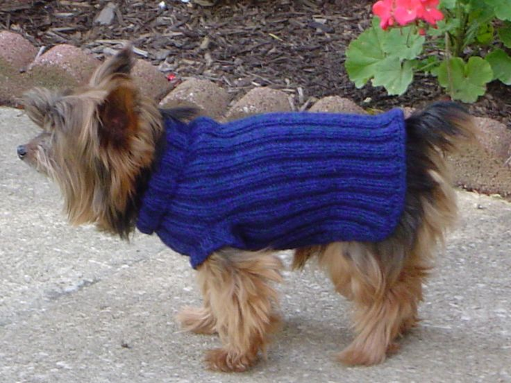 168 Best Knit Dog Sweaters And Beds Images On Pinterest Knitting