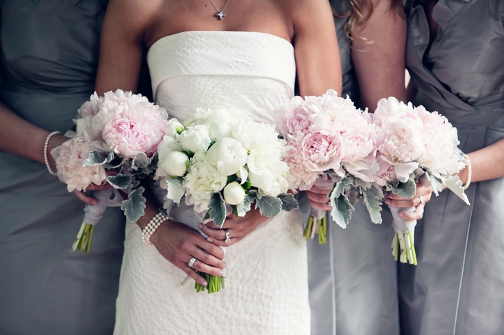 White #peony #bouquet for the bride & #pink #peony #bouquets for the bridesmaids - #floral #design by Fresh Tendrils.: White Peonies Bouquets, Red Bouquets, Bridesmaid Dresses, Cute Ideas, Wedding Flowers, Bridesmaids Dresses, The Bride, Bridesmaid Bouquets, Pink Peonies Bouquets