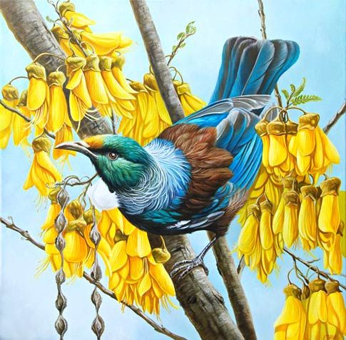 "Craig Platt NZ wildlife artist, New Zealand birds artist, Auckland illustrator, NZ birdlife, Kingfisher, Tui oil painting, Pukeko -- ""Tui in Gold"""