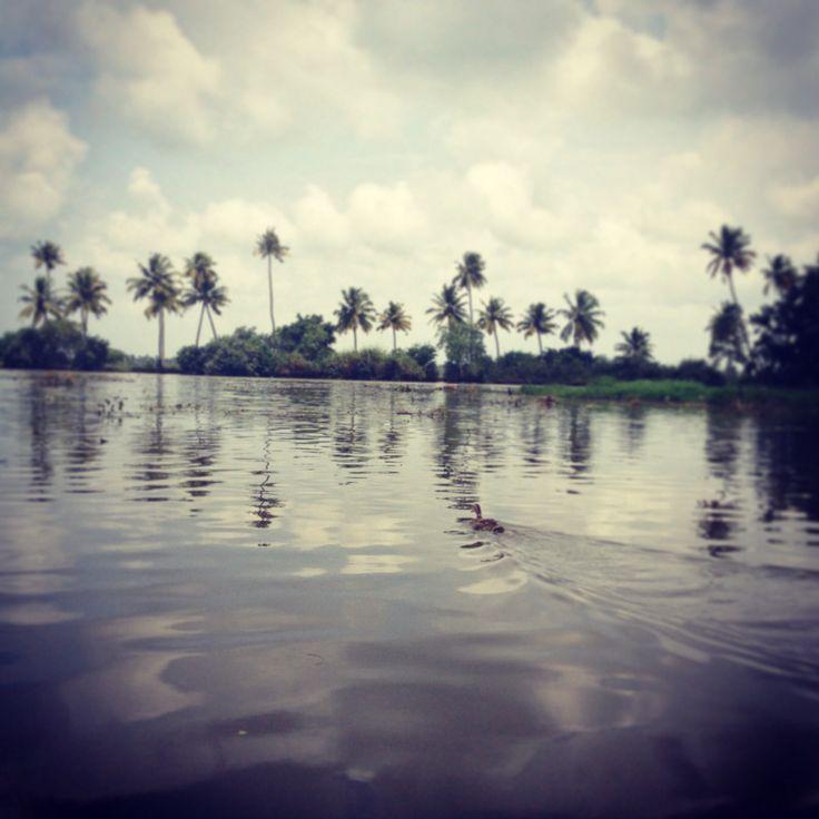 Kochin India Allepey