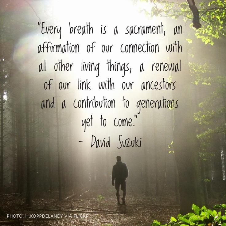 Words of wisdom by David Suzuki