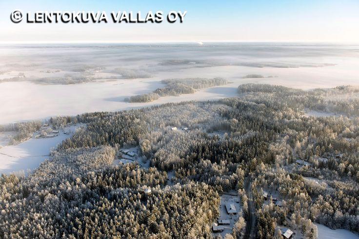 Talvinen metsämaisema, Lempäälä Ilmakuva: Lentokuva Vallas Oy