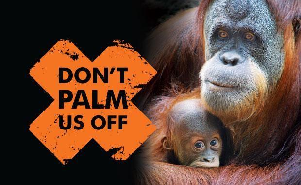 Don't palm us off orang-utans