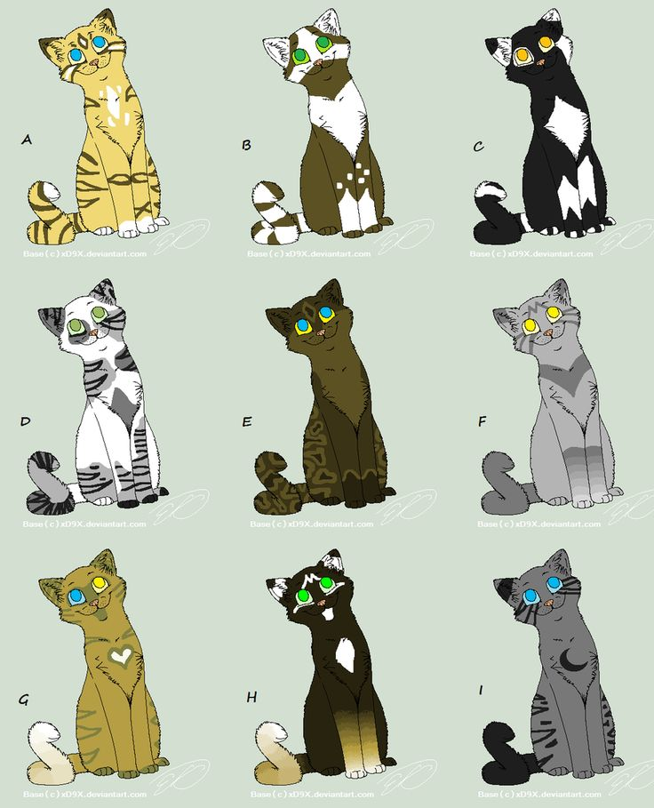 Warriors Into The Wild Manga: 335 Best Warrior Cats!!!!!!!!!!!!! Images On Pinterest