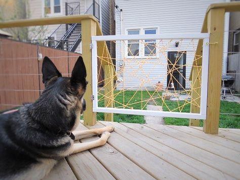 Best 25 Dog Gates Ideas On Pinterest Baby Gates