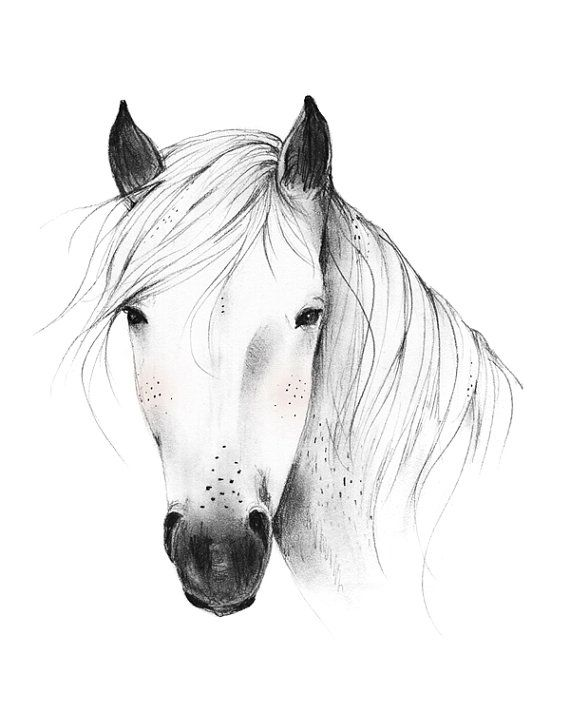 Wild Horse 8X10 11X14 Art Print van KelliMurrayArt op Etsy