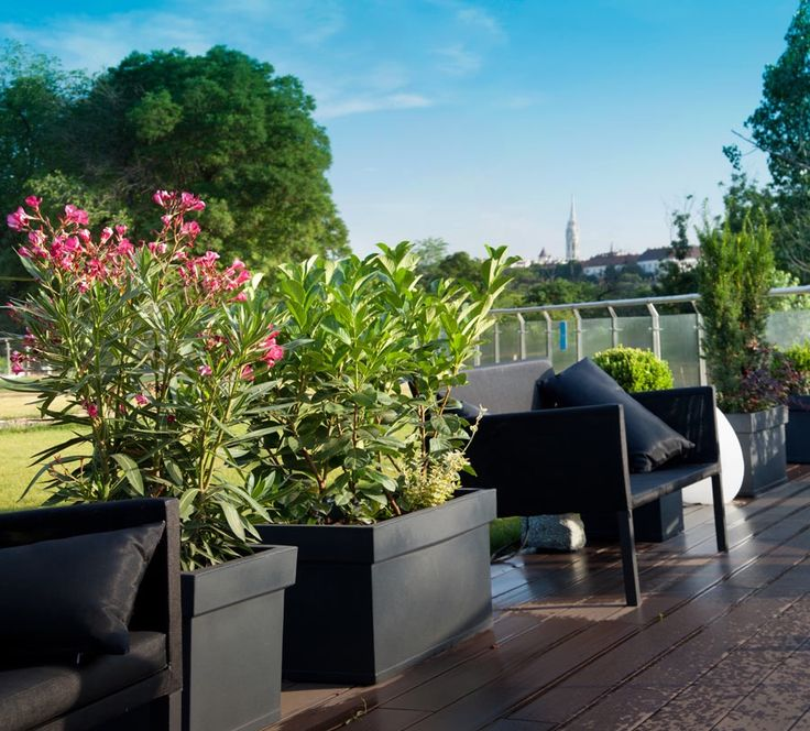 www.zoldlevego.hu Oxygen naphegy növénydekoráció referencia