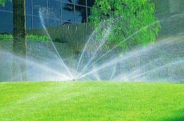 Разбрызгиватель для полива газона и огорода. Садовые разбрызгиватели воды