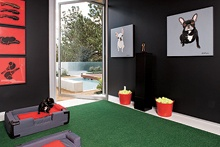 @Antonia Hutt's Dog's Bedroom                             A stylish boudoir/rumpus room with Astro Turf carpet.  Love the series of red paintings; bacon, steak & lamb chops.