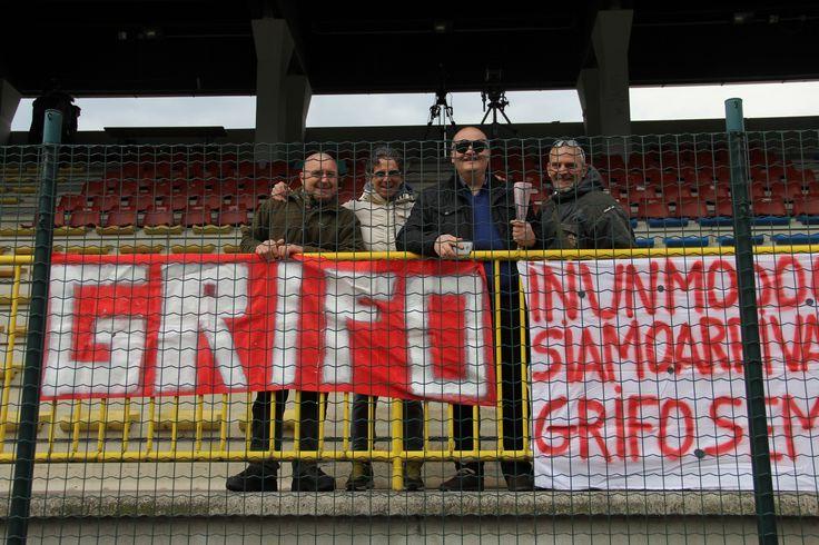 Grifo Perugia 2015