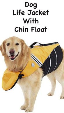 Dog life jacket with chin float - For your next swimming session with the whole…