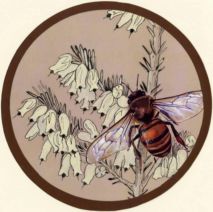 Пчела - медонос / Работа неизвестного автора 999