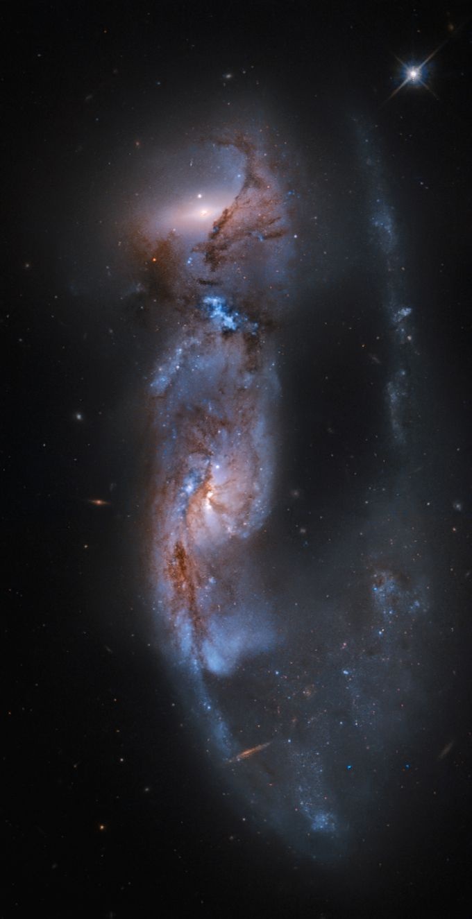 """like-wildfire: """"Arp 81: 100 Million Years Later (Image Credit: Hubble Legacy Archive, ESA, NASA, Martin Pugh) """"From planet Earth, we see this strongly distorted pair of galaxies, cataloged as Arp 81,..."""