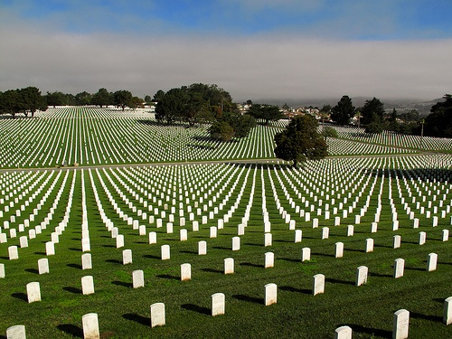 Golden Gate National Cemetery - San Bruno, California...pretty much symbolizes my stay there...
