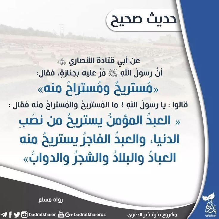 Pin By Yacine Dz On أحاديث الرسول صلى الله عليه وسلم Pleo Ljig Ube