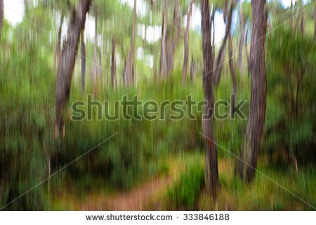 Abstract Blurry Green Forest - made with camera motion