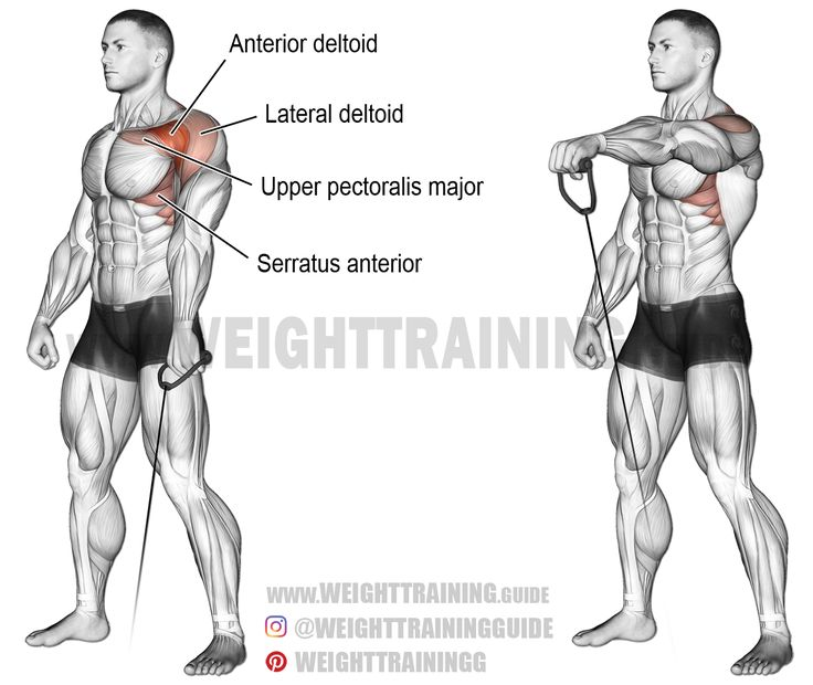 Cable one arm front raise. A unilateral isolation exercise. Target muscle: Anterior Deltoid. Synergistic muscles: Lateral Deltoid, Upper Pectoralis Major, Serratus Anterior, and Middle and Lower Trapezius.