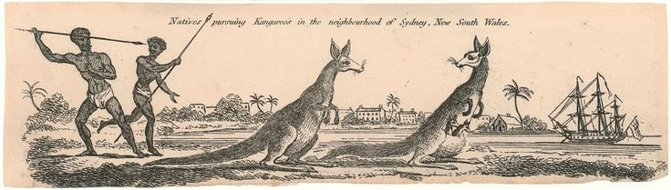 Unknown artist, 'Natives pursuing Kanguroo's [sic] in the neighbourhood of Sydney, New South Wales' / etching. ca. 1800. Mitchell Library, State Library of New South Wales: http://www.acmssearch.sl.nsw.gov.au/search/itemDetailPaged.cgi?itemID=413774