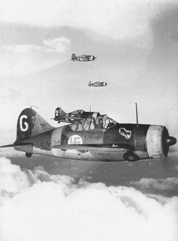 """A group of  Brewster B-239 """"Buffalo""""s from the Finnish 24th Fighter Squadron in flight over norther Karelia. The Finns were enamored of the chunky, slow Buffalo, and used it to devastating effect during both the Russo-Finnish War and WWII."""