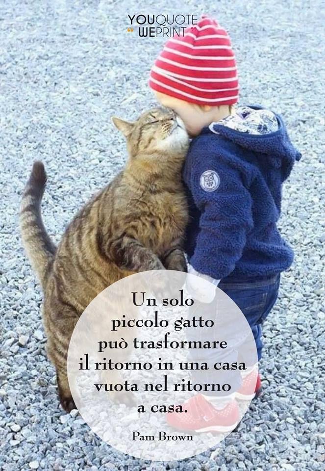 Il 17 febbraio si celebra la Festa nazionale del #gatto. Ecco la nostra raccolta di frasi sui gatti. Un gatto può trasformare una casa vuota in una casa. Anche voi siete d'accordo con questo aforisma?