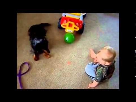 Lustige Baby Videos Zum Totlachen - Video