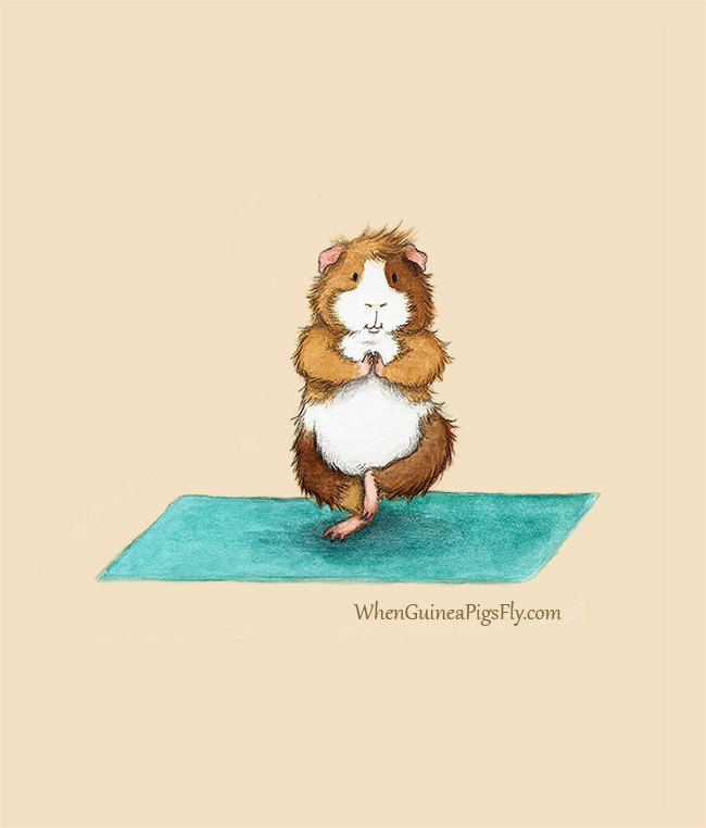I want to Pin them all but see them for yourself... http://www.etsy.com/shop/WhenGuineaPigsFly?page=1  Yoguineas - Tree Pose - Cute Guinea Pig Yoga Art Print. $28.00, via Etsy.
