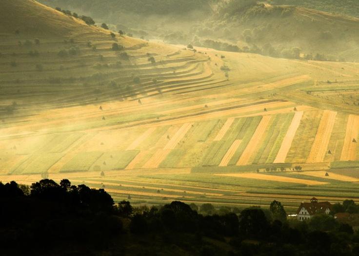Ceata din vale anunta o dimineata numa' buna pentru luat Rimetea la pas, pe indelete.