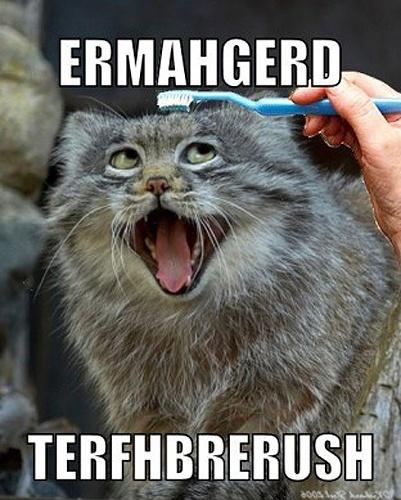 Grumpy Cat Game Easter Game