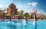 Book Aquaventure waterpark Dubai online, browse #aquaventurewater parkDubai ticket prices, deals & offers to get admission ticket now.