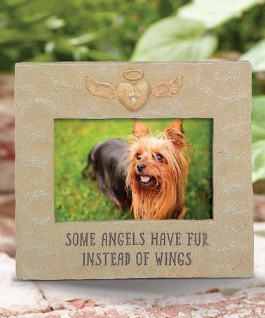 39 Best Pet Sympathy Gift Ideas Images On Pinterest Pet