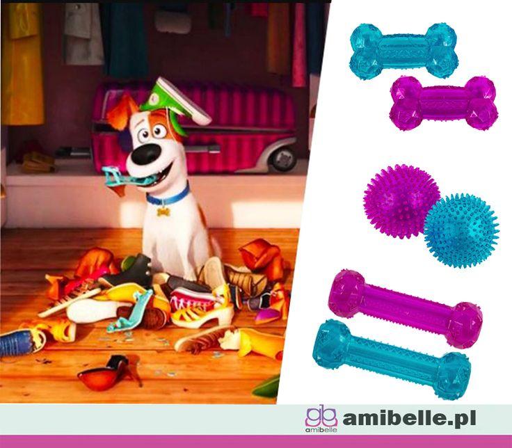 Czy Twój pies ma odpowiednie zabawki?Zobacz nasze z termoplastycznego kauczuku. 👉www.amibelle.pl#dlapsa #zabawki #gryzaki #piłki #kości #akcesoria