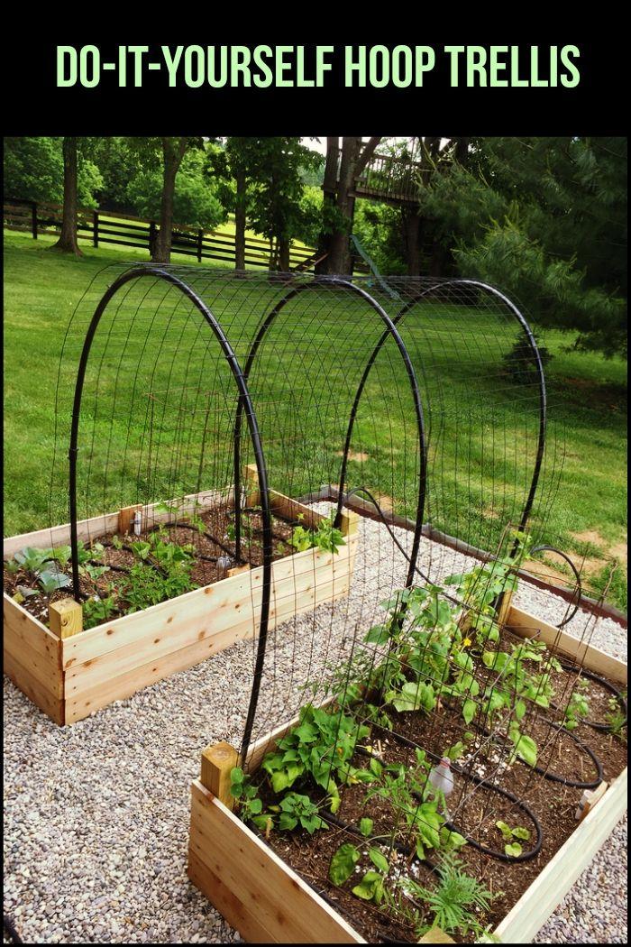 DIY Hoop House Trellis | gardening | Raised garden beds