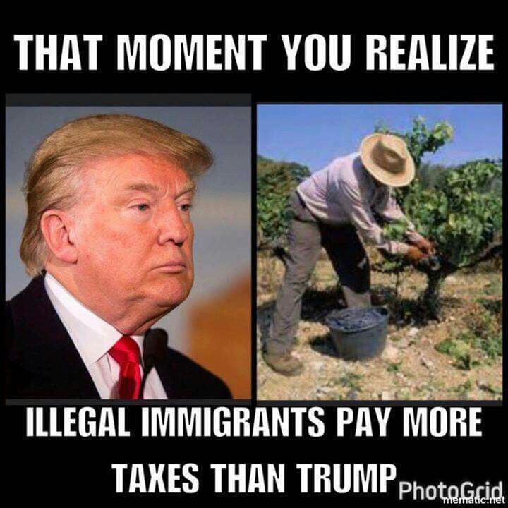 """paying no taxes makes me smart."" Trump said.  NO TrumPredator DickTater TWITLER, paying no taxes makes you a leech, a burden on society WITH the ability to pay your fair share."