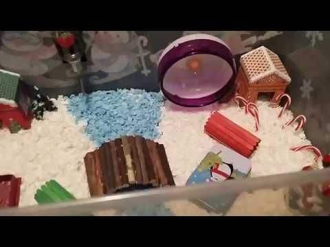 Dec Hamster Cage - Christmas Theme