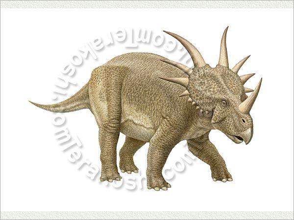 48 Best Dinosaur Land Images On Pinterest