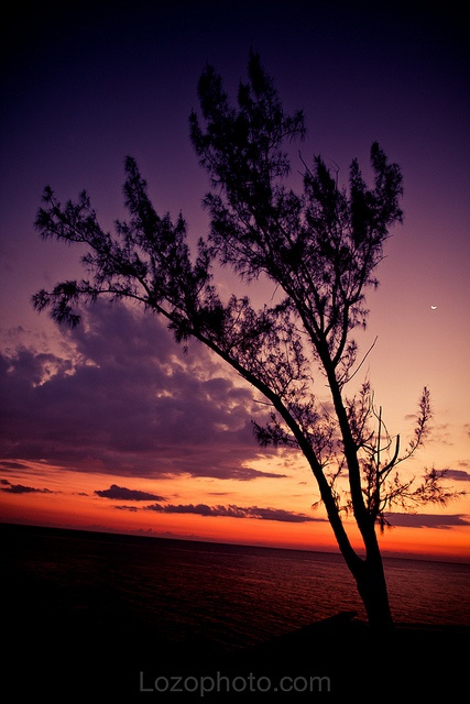 Jamaica, March 2011 #Jamaica #Twilight
