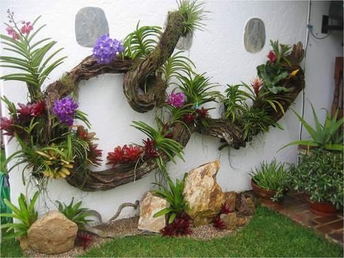 Unique wall garden