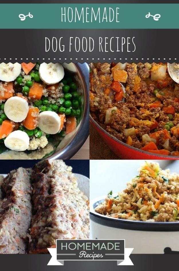Kết quả hình ảnh cho dog Meal Food as Treats