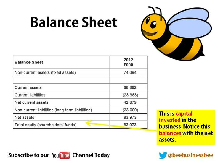 Bee Business Bee Balance Sheets and Income Statements Tutorial - balance sheet