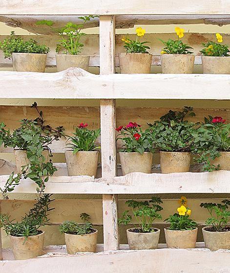 Jy kan jou eie vertikale tuin maak. Ons wys jou hoe jy afvalmateriaal kan inspan om as 'n vinnige naweekprojek jou eie vertikale tuin te maak.